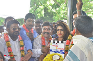 Chennai to Bangkok Movie Launch ~ Bollywood and South Indian Cinema Actress Exclusive Picture Galleries