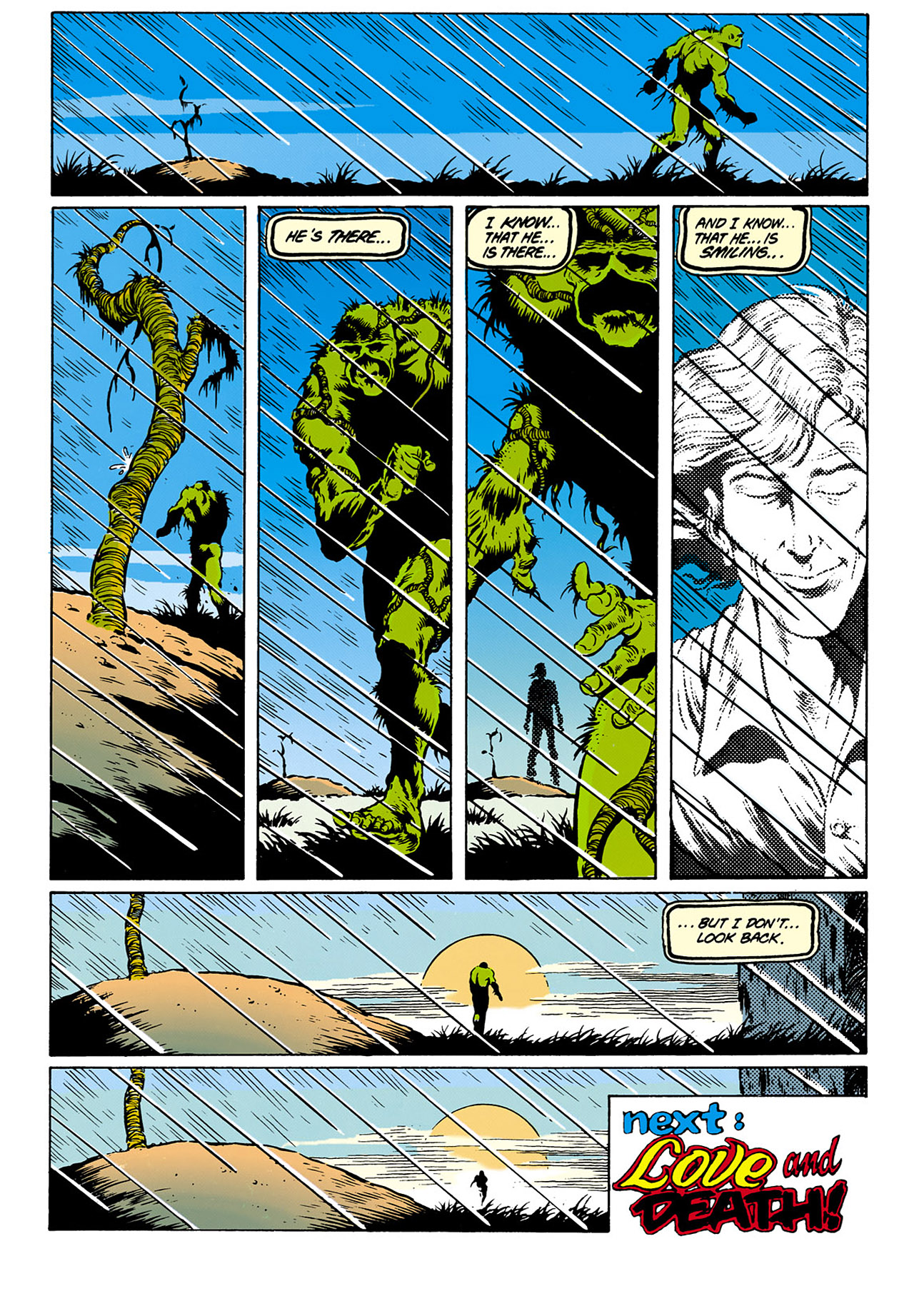 Swamp Thing (1982) Issue #28 #36 - English 24