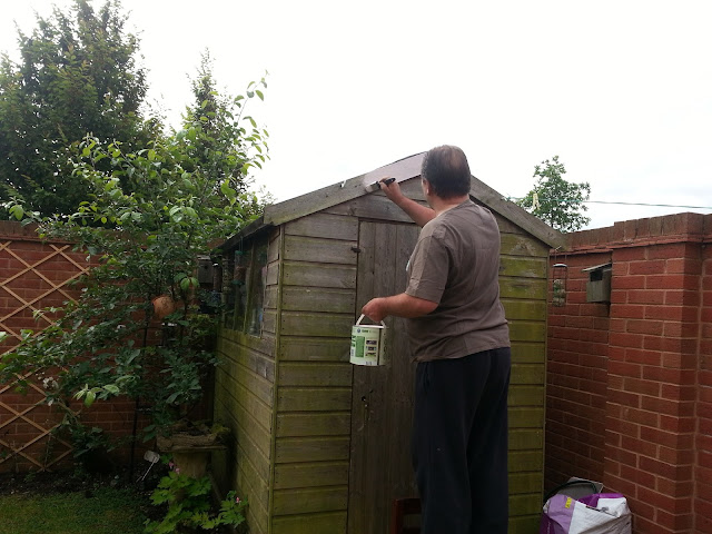 Man Painting Shed Pink