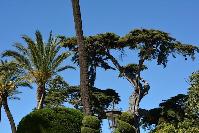 Park Genoves Cadiz