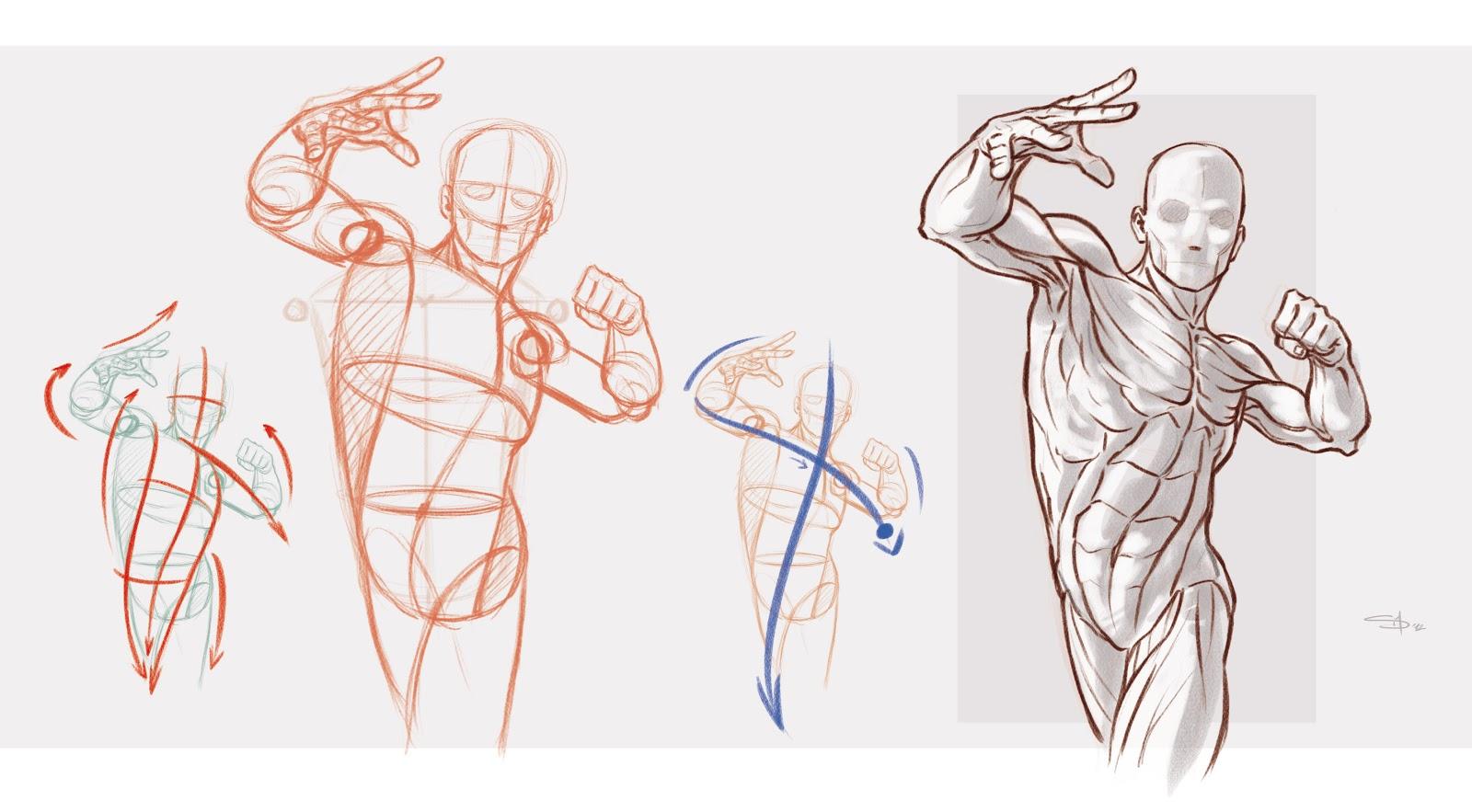 Frame articolazione delle braccia