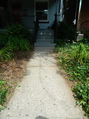 Little Italy Front Garden Clean up after by Paul Jung Gardening Services Toronto