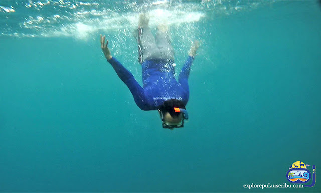 snorkeling di pulau tongkeng