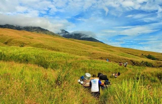 Sabana Gunung Rinjani