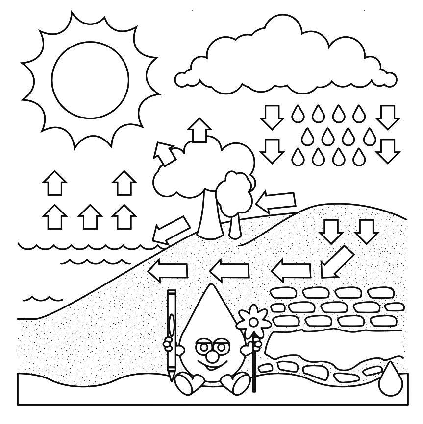 15 Dibujos Del Ciclo Del Agua Para Colorear Gratis