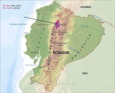 Eriocnemis nigrivestis map