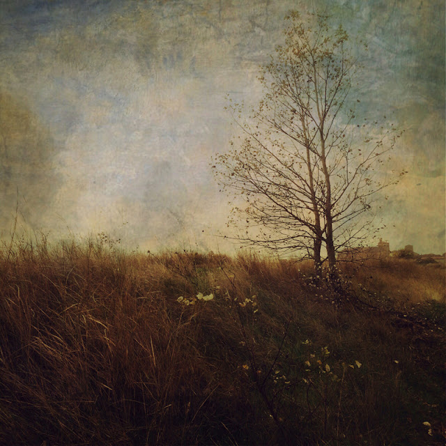 artwork, iphoneart, landscape Photo pictorialism, artwork for sale, photography for sale, estudio 4.7, lopez moral, for sale art, venta de arte, Madrid