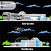 مخطط مشروع بناء مختبر للعلوم بشكل جميل كاملا اوتوكاد dwg