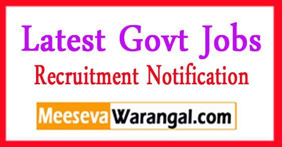 BECIL Monitor Auditor Recruitment 2017