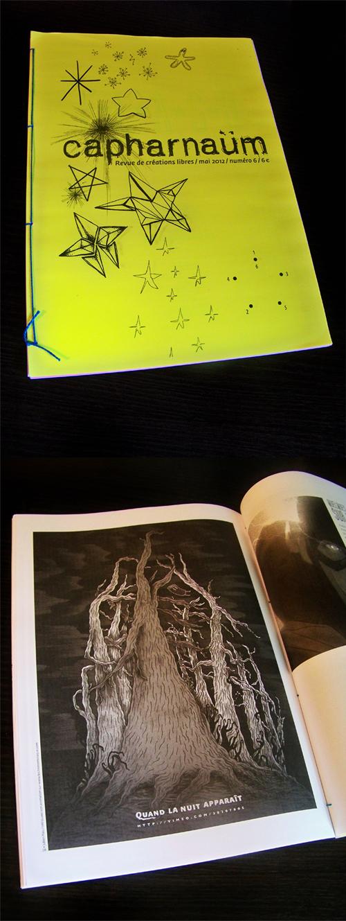 capharnaum-illustration-les-insomniaques