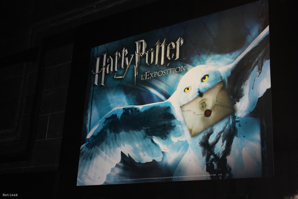 affiche exposition Harry Potter