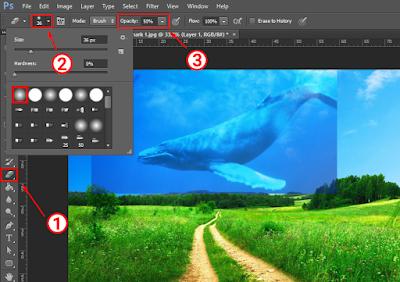 Cara Menggabungkan Gambar Menjadi Satu Dengan Photoshop 4