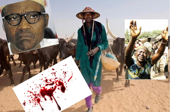 Image result for Herdsmen killings: FG can't reduce Christians to second hand citizens