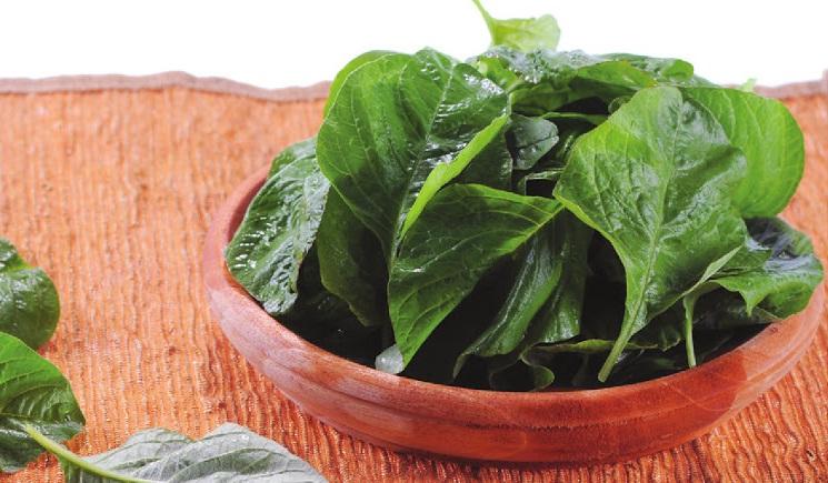 77 Manfaat dan Khasiat Sayur Bayam untuk Kesehatan, Kecantikan Serta Efek Samping