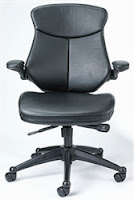 Wing Series Office Chair by Eurotech