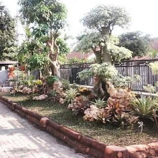 Tukang taman surabaya - taman luar pagar