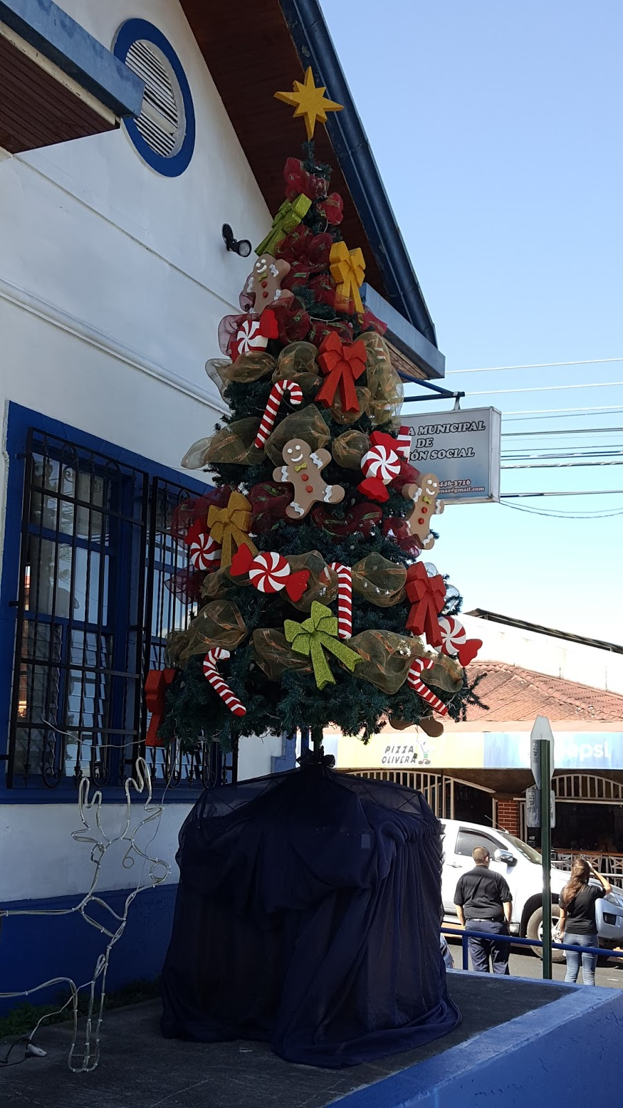 city hall christmas tree not one in park this year like in past atenas costa rica - Municipal Christmas Decorations
