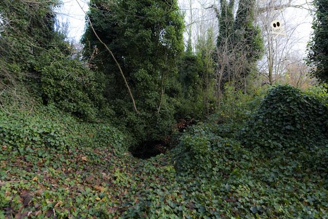 El canal Schnikel se esconde por debajo de las hiedras de Huis te Vraag