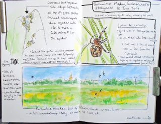 Nature journalling portholme Meadow