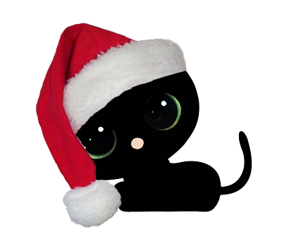 black cat red santa hat