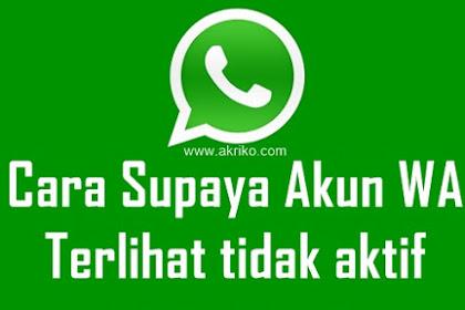 Cara Untuk Terlihat Tidak Aktif di WhatsApp
