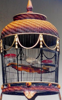 Daftar Harga Sangkar Burung Perkutut Biasa Termurah Dan Terlengkap