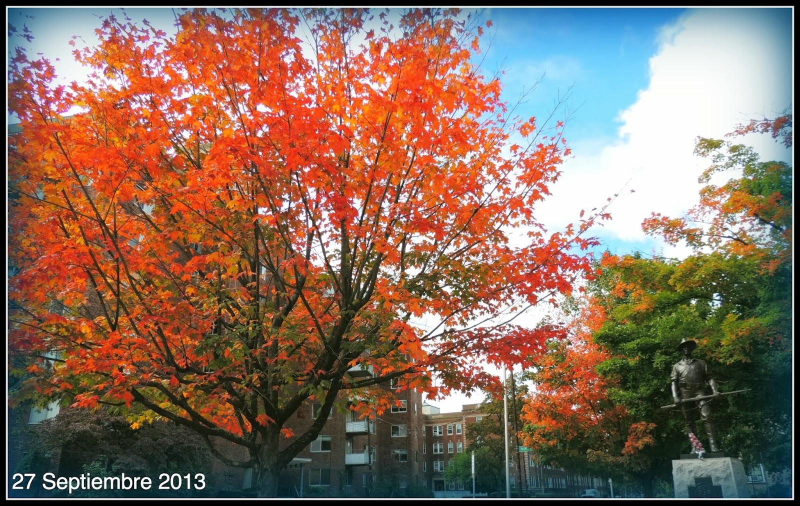 Colores del Otoño de Nueva Inglaterra