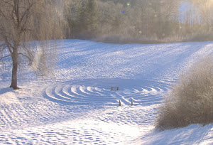 LABYRINTH IN WINTER