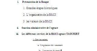 RAPPORT DE BMCI TÉLÉCHARGER STAGE
