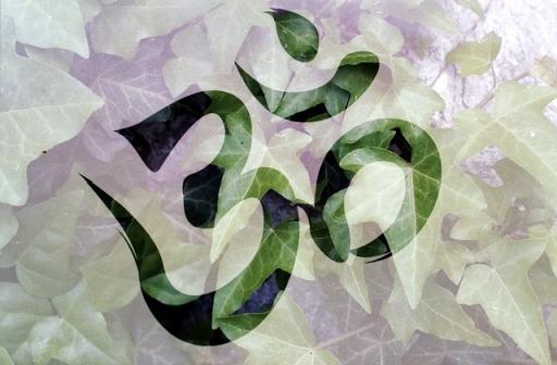 Ayurveda holistic healing