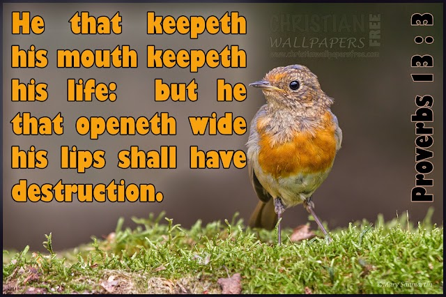 He that keepeth his mouth keepeth his life