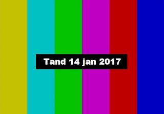 Tandberg 14 Januari 2017
