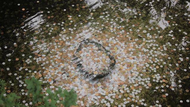 Rumus Cash Flow dan Penjelasannya