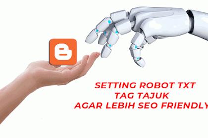Cara Simple Setting Robot Txt dan Tag Tajuk Blogspot Bagi Pemula