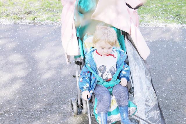 Twenty two months toddler blog update