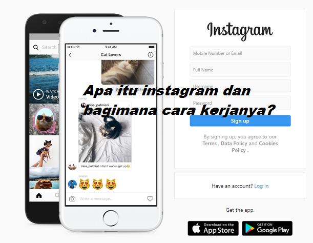 apa itu instagram