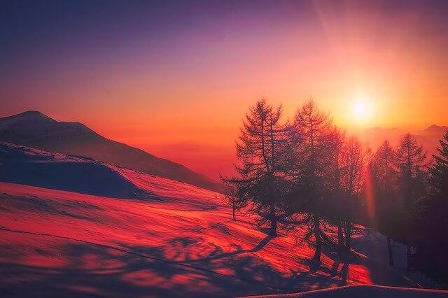 Manfaat Energi Matahari bagi Tumbuhan