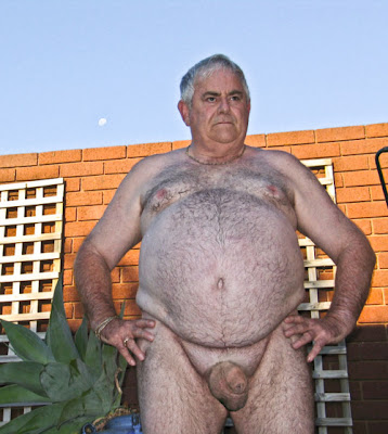 mature hairy bear cock