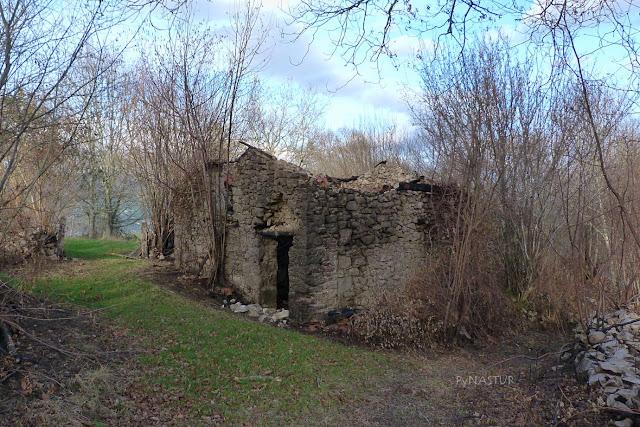 Cabaña - Piloña - Asturias