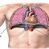 Cuidados de Enfermagem ao paciente submetido à drenagem de tórax