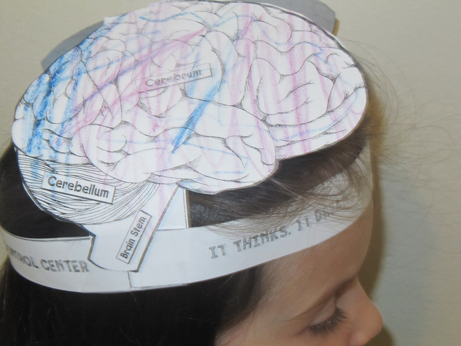 Jewish homeschool in nyc july 2013 for Brain hat template