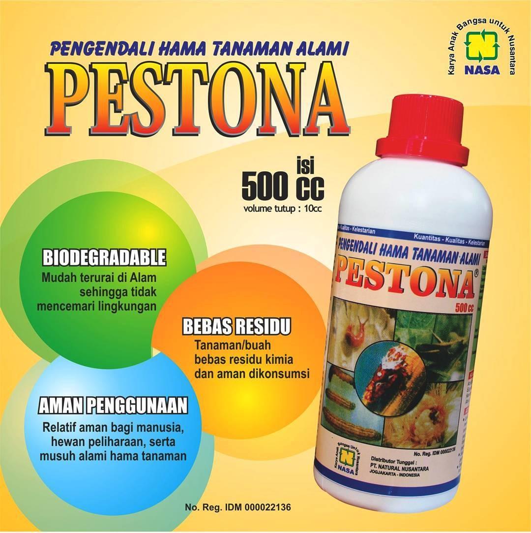 Pestisida Organik PESTONA - Pestisida Sahabat Petani dan Ramah Lingkungan