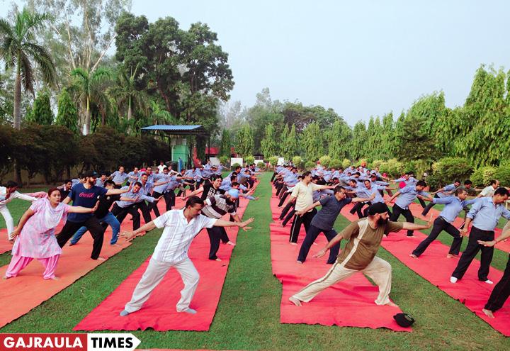 yoga-day-in-gajraula