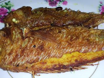 Resipi Mudah Berbuka Puasa : Ikan Kerisi Goreng Sedap