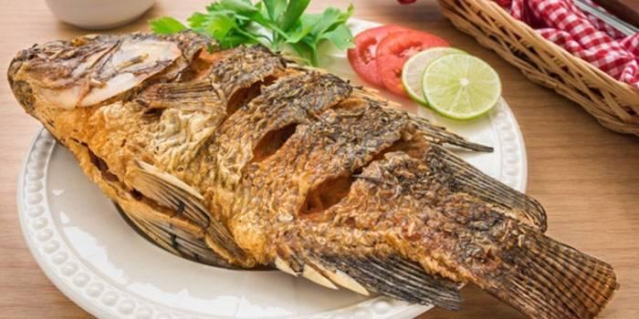 Manfaat Ikan Mujair bagi Kesehatan Tubuh