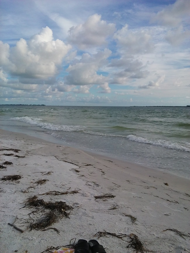 Fort De Soto Beach Florida