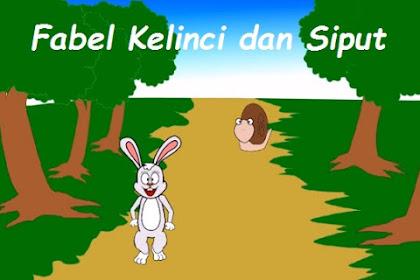 Fabel Kelinci dan Siput Cerdas (Pelajaran Rendah Hati)