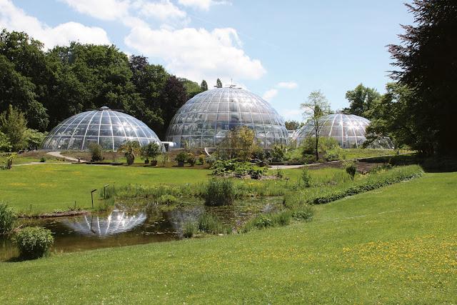 حديقة botanischen garten