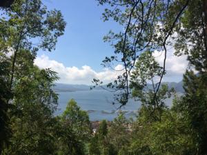 Jalur Track Lintas Alam Taman Wisata Alam Panelokan | Kintamani Bali