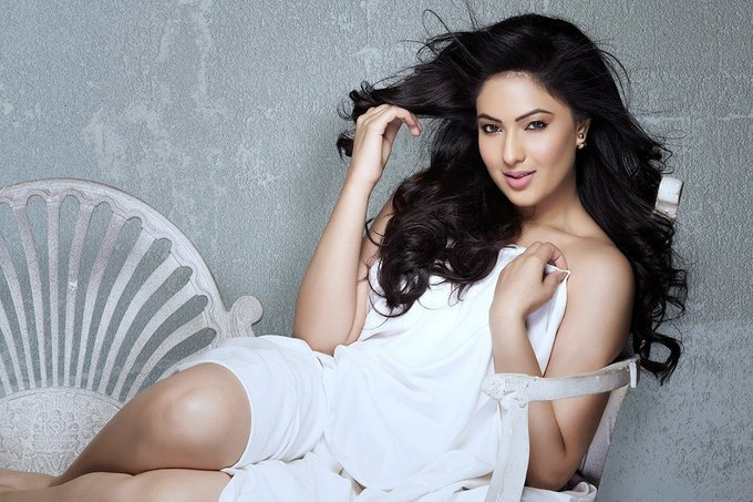 Actress Nikesha Patel Stunning Hot Photo Stills